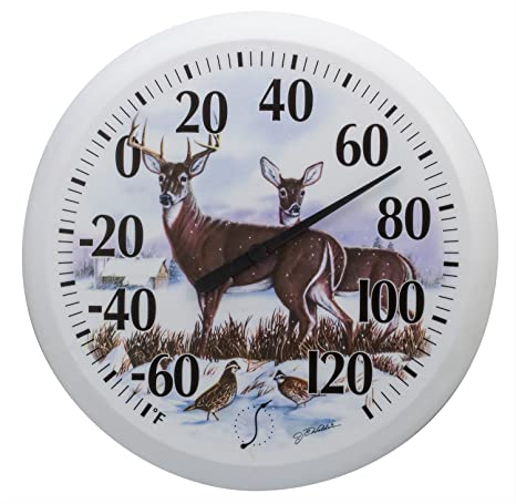 Indoor and Outdoor  Dial Thermometer Taylor  Bird Design  6 in