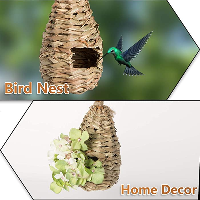 AQUEENLY-Hummingbird-House