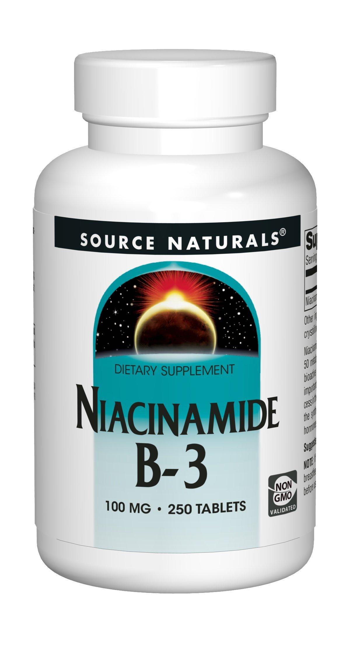Source Naturals Niacinamide 100mg Vitamin B3 Supplement - Flush Free - 250 Tablets