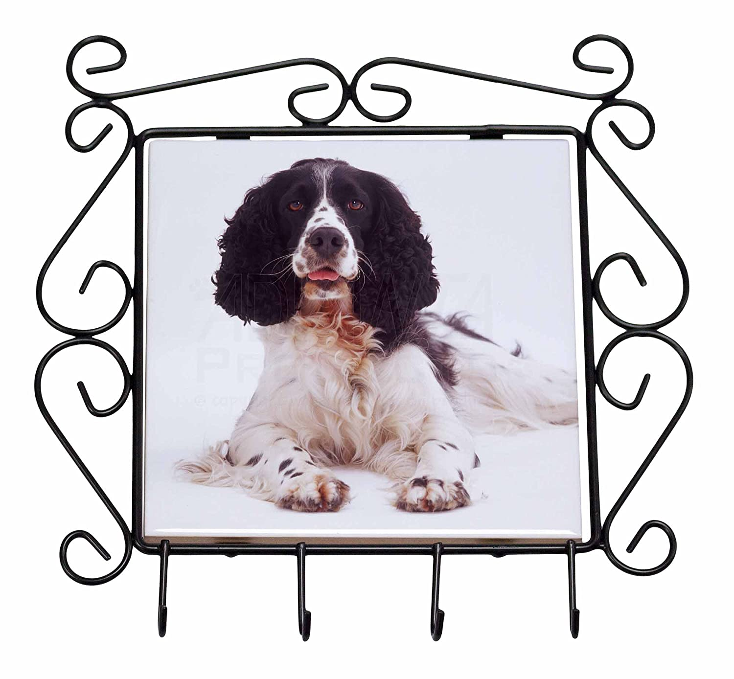 Black and White Springer Spaniel Wrought Iron Key Holder Hooks Christmas Gift Advanta Products