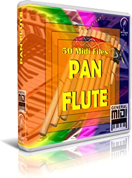 Pan Flute - Pendrive USB OTG para Teclados Midi, PC, Móvil ...