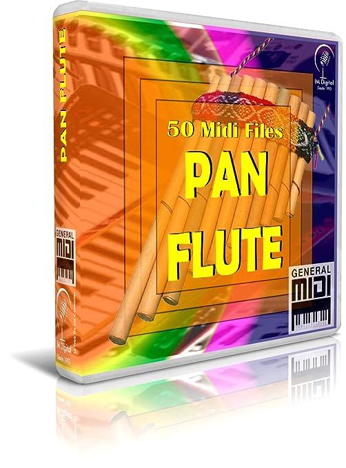 Pan Flute - Pendrive USB OTG para Teclados Midi, PC, Móvil, Tablet, Módulo o Reproductor Midi Que utilices: Amazon.es: Electrónica