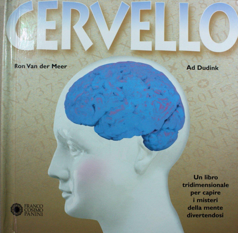Cervello. Con modellini pop-up (I tridimensionali): Amazon.es ...