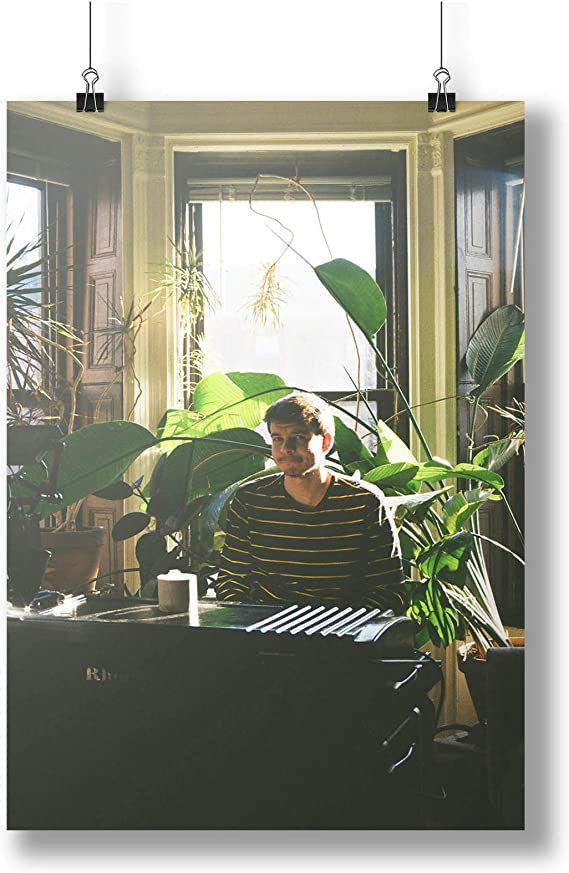 Sunflower Rex Orange County  Singer Star  Art  A0 A1 A2 A3 A4 Photo Poster