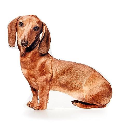Cojín Co - de perro salchicha pelo corto marrón con forma de ...