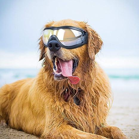 Amazon.com: Namsan Gafas de sol para perro, gafas de sol ...