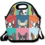 Cartoon Boston Terriers Bulldog Multifunctional Lunch Tote Bag Carry Box