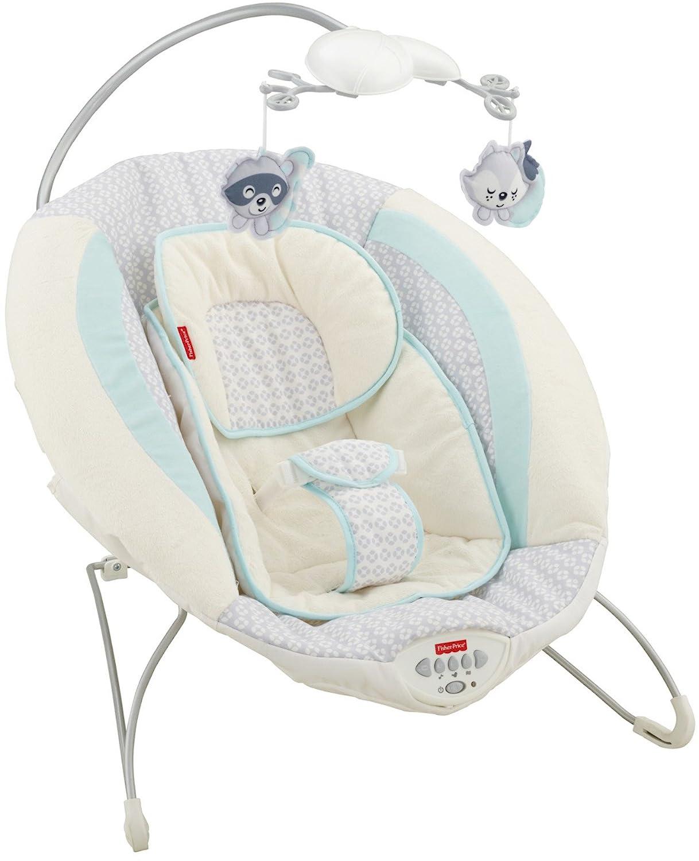 Fisher Price Moonlight Meadow Deluxe Bouncer Baby