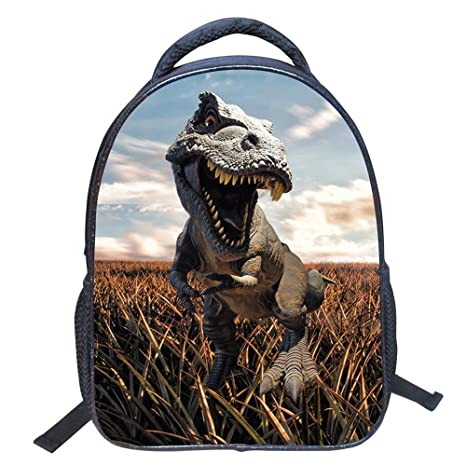JIAN YA NA 3D Bolsas de escuela de dinosaurios Mochilas de nylon para niños de jardín ...