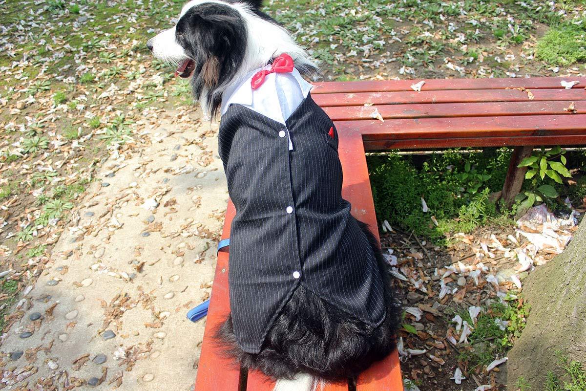 Arbre Cappotto per Animali Domestici Pet Supplies Misc Pet Vestiti Grandi Vestiti per Cani Grande Cane Smoking (colore  Nero, Dimensione  7XL) Vestiti per Cani (colore   nero, Dimensione   9XL)