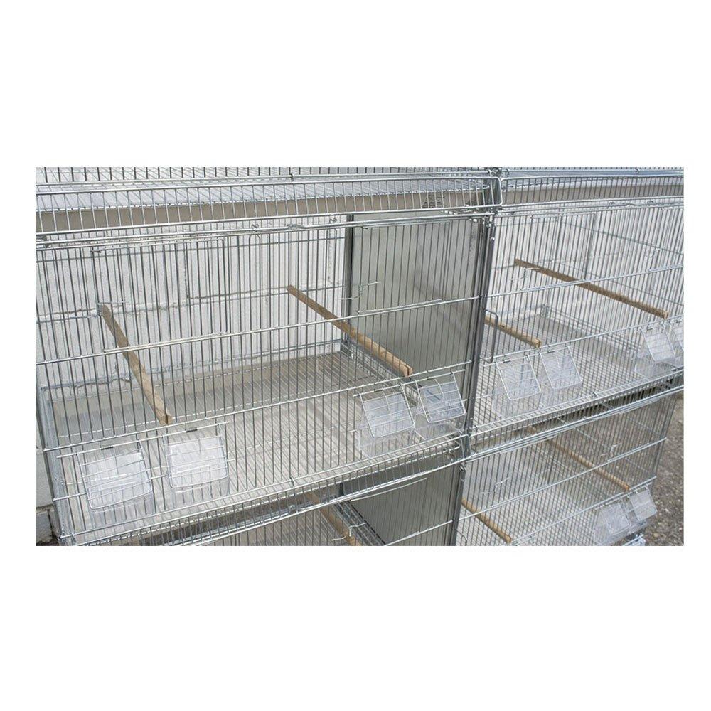 Pets Solution Batería de Jaula para pájaros de 240 cm: Amazon.es ...