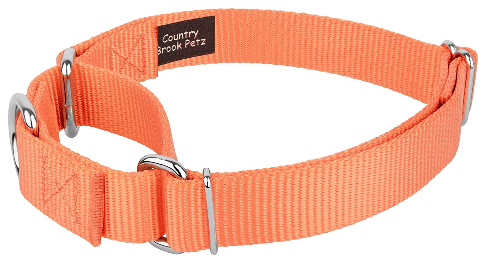 Country Brook Design | Martingale Heavyduty Nylon Dog - 2