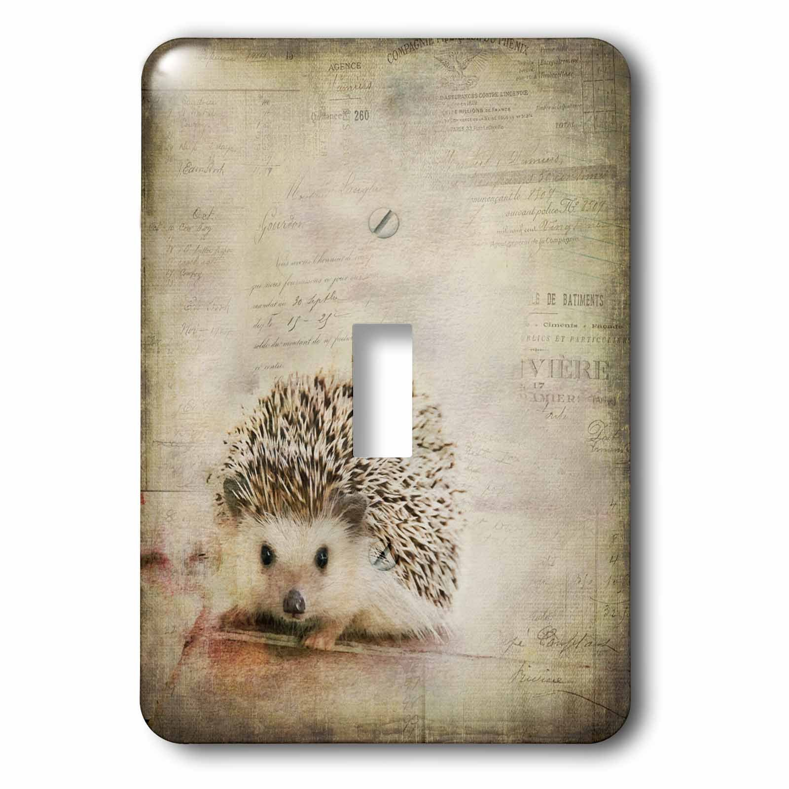 3dRose Andrea Haase Animals Illustration - Hedgehog Mixed Media Art With Typographic Elements - Light Switch Covers - single toggle switch (lsp_268162_1)