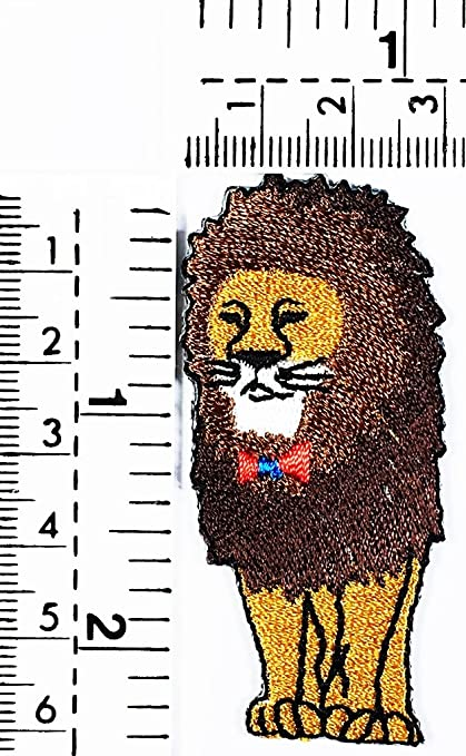 Amazon Lion King Of The Jungle Cat Puma Jaguar Tiger Cheetah