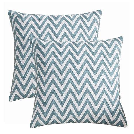 Amazon.com: BOOMTECK - Juego de 2 fundas de almohada, diseño ...