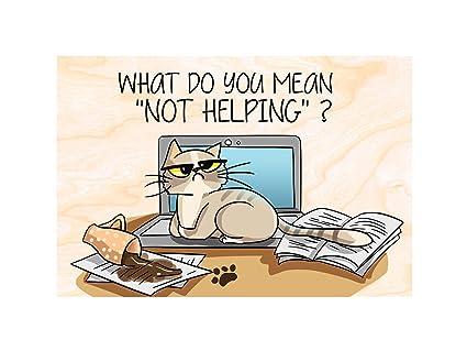 Divertido regalo para gatos.. Imanes para nevera imanes de nevera. Gato sentado en