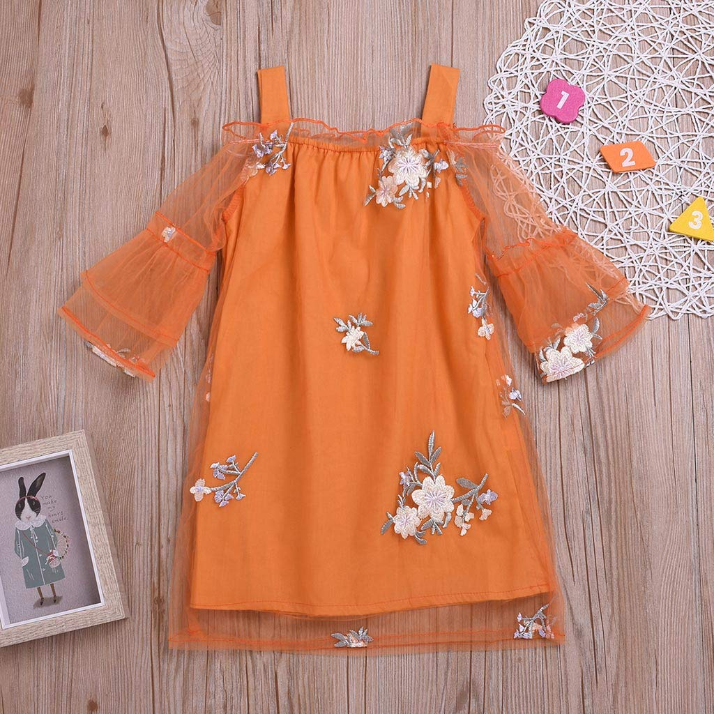 Toddler Kid Baby Girls Clothes Flower Embroidery Party Princess Tulle Tutu Dress