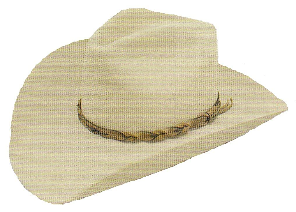 94fb0804e Amazon.com: Stetson Dakota Cowboy hat: Clothing