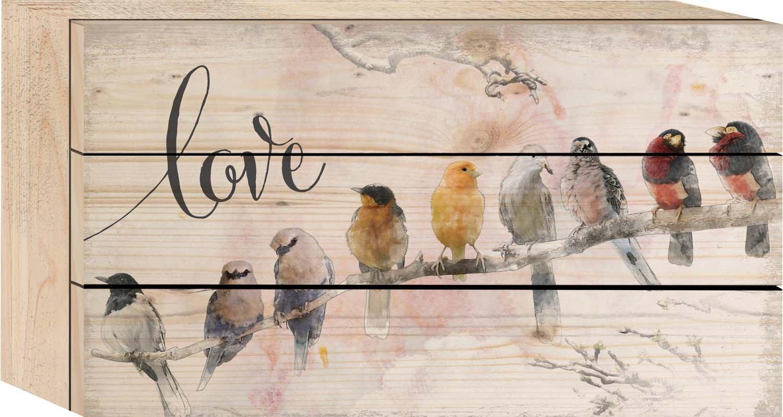 GRAHAM DUNN Love Watercolor Birds on Branch 5 x 8 Wood Plank Design Wall Box Sign P