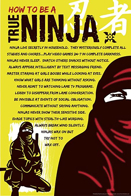 Amazon.com: How to be A True Ninja Funny Poster 12x18 inch ...