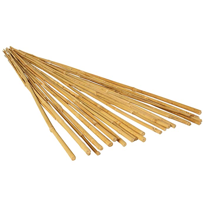 Hydrofarm HGBB6 6' Natural Bamboo Stake, Pack of 25