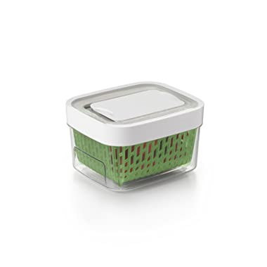 OXO GreenSaver Produce Keeper - Small -Green