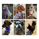 OWUDE Clip-On Dog Cat Collar Light, Waterproof
