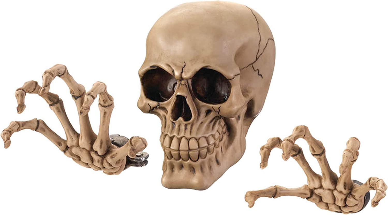 Dragon Crest Skeleton Wall Decor Set 3.87x3x5.75