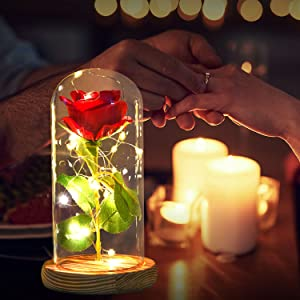ShangTianFeng Room Decor, Rose Night Light, Best Gift for Mom,Gifts for Girlfriend,Red Rose with Light