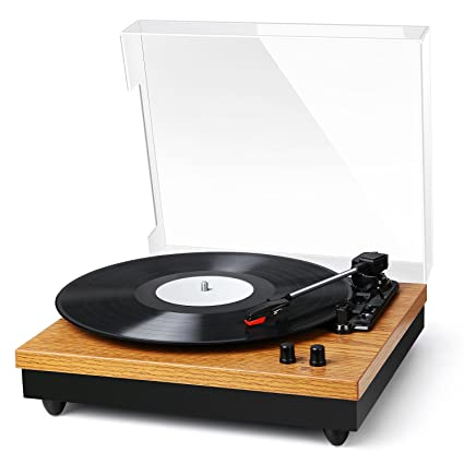 Hook up my turntable to speakers