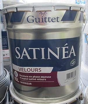 Pot De Peinture Satinea Velours 15l Amazonfr Cuisine Maison