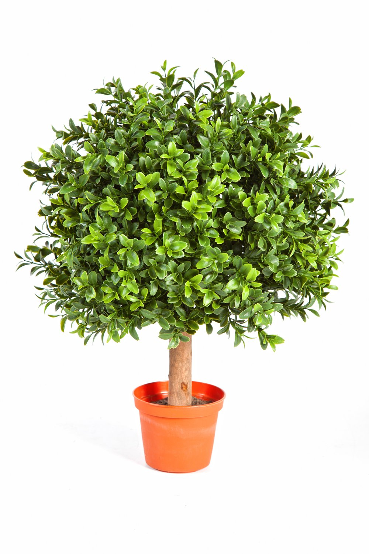 Set 2 x di Cespuglio di bosso artificiale TOM con fusto, 430 foglie, 45 cm, Ø 30 cm - 2 pezzi di Pianta in vaso / Bosso decorativo - artplants