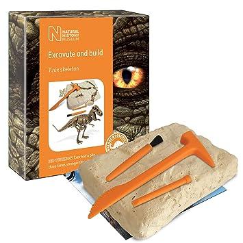 Cosas wow del Museo de Historia Natural Kit de Excavación Tyranosaurus Rex