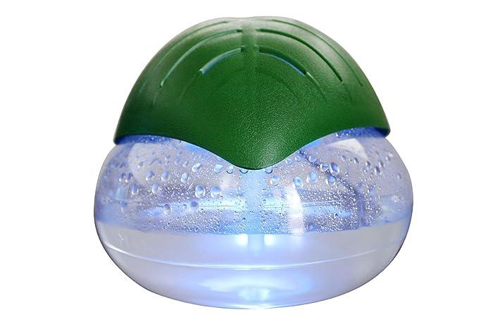 Top 10 Detailing Shampoo Vacuum