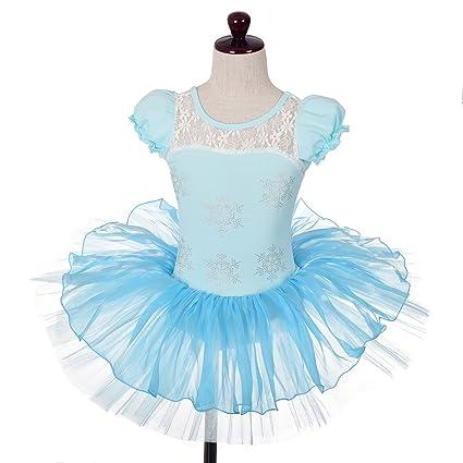 0450cc7967f3 Dressy Daisy Girlsu0027 Rhinestone Snowflakes Frozen Ballet Tutu Dance  Costume Fairy Dress Size 4- Sc 1 St Amazon.com