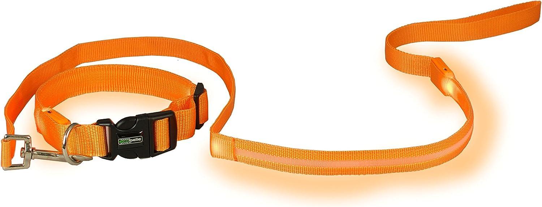 r/églable ECOBELLE/® set Collier pour Chien Lumineux LED Taille Collier SMALL 35-43cm avec 2 C/âbles USB Laisse 1.20m Haute S/écurit/é et Visibilit/é Laisse pour Chien Lumineux LED Couleur ORANGE USB Rechargeable