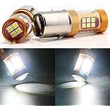 Grandview 1680 Lumens Super luminoso H6 / BA20D 3030-28SMD LED lampadina di ricambio della lampadina della lampadina del segnale di direzione 12-24V con obiettivo 6500K bianco (pacchetto di 2)