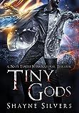 Tiny Gods: A Nate Temple Supernatural Thriller Book 6
