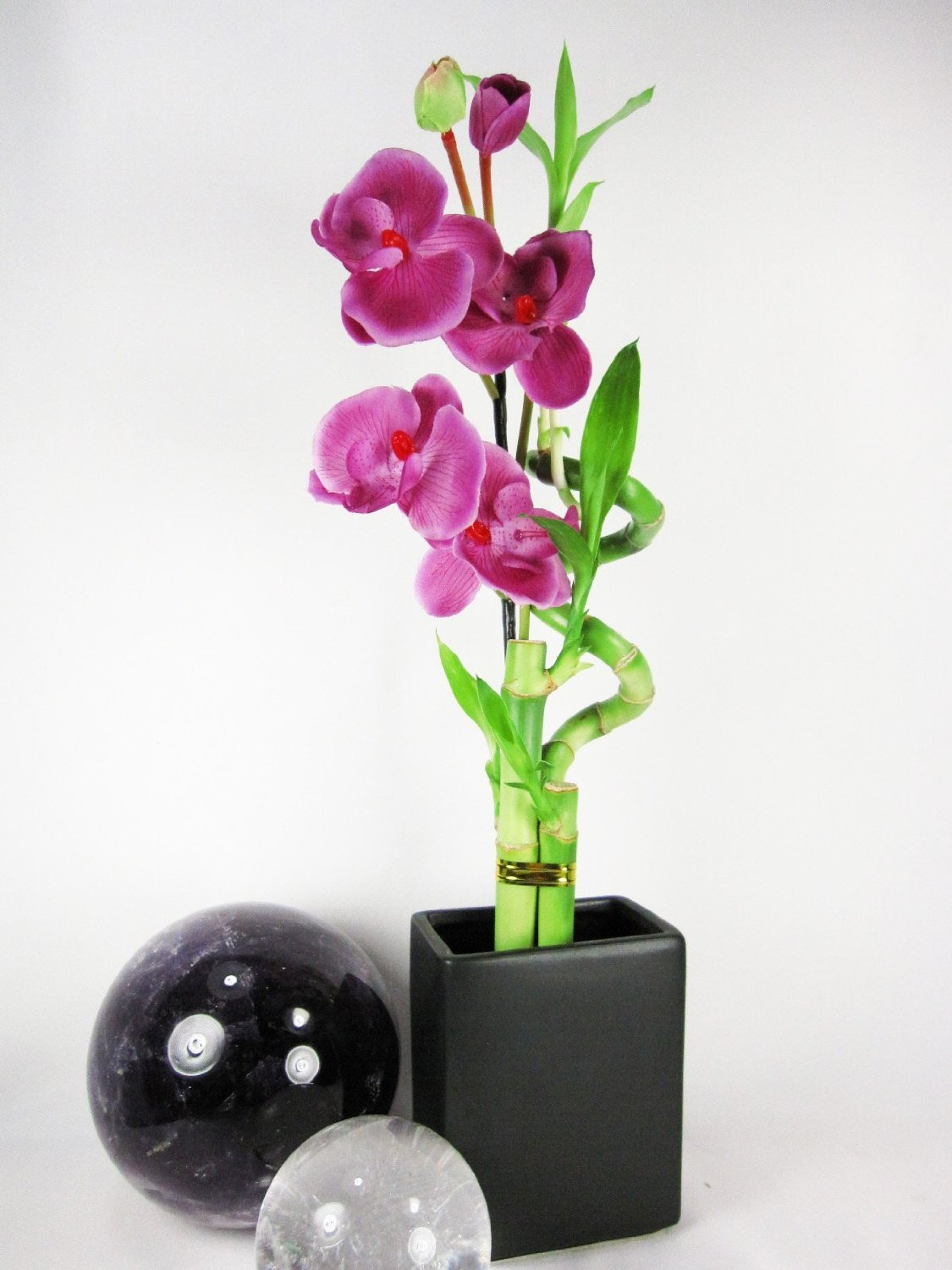 Set of 2 Live Spiral 3 Style Lucky Bambo with Artifical Orchid Flower Tall Rectangular Black Vase