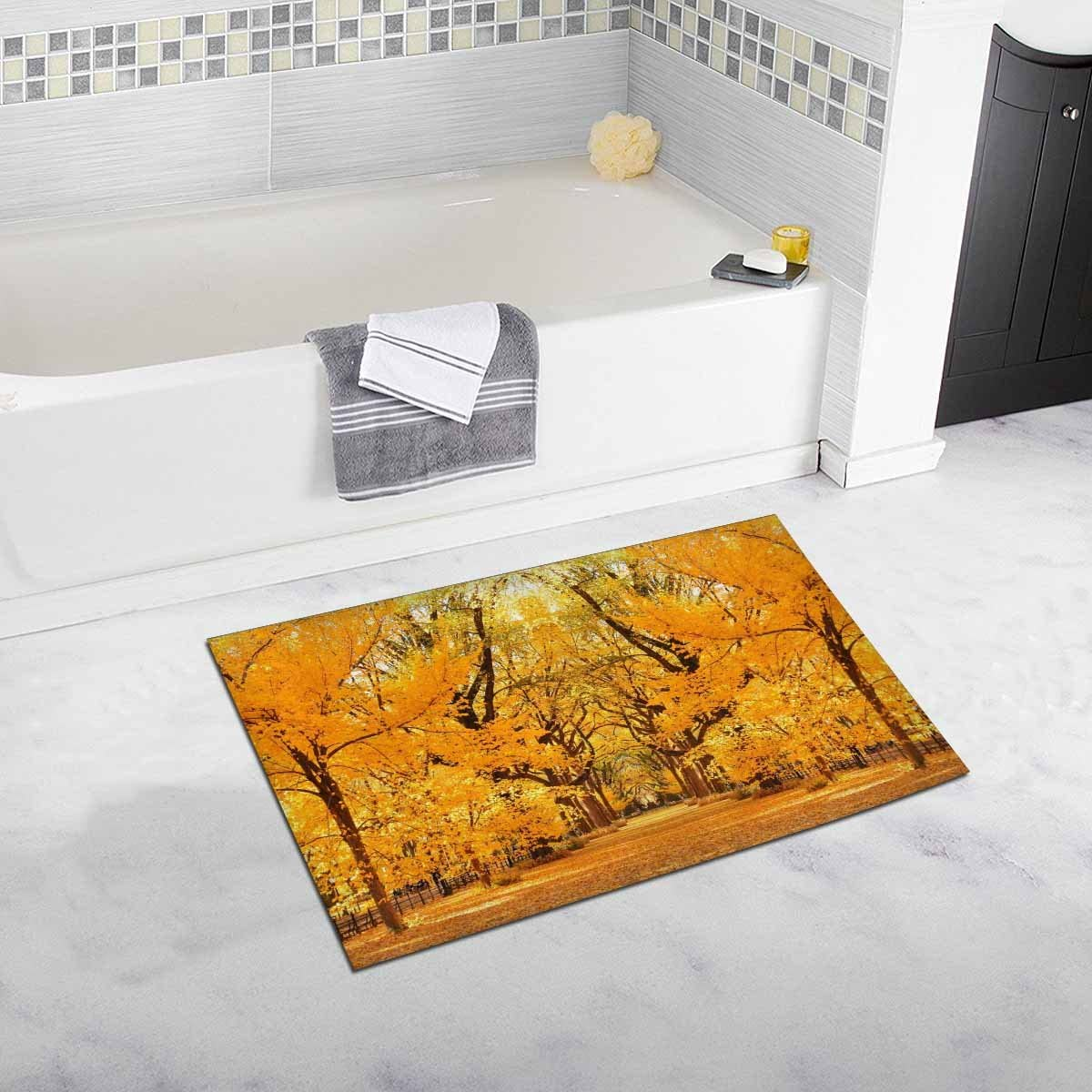 INTERESTPRINT Central Park Autumn in Midtown Manhattan New York City House Decor Non Slip Bath Rug Mat Absorbent Bathroom Floor Mat Doormat 20 x 32 Inches