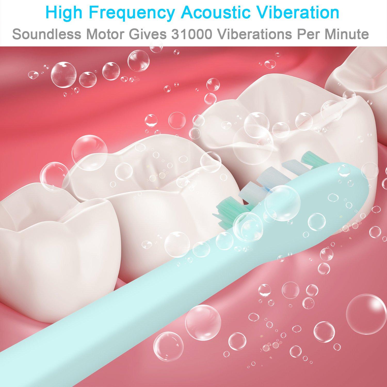 shaojier batería eléctrico cepillo de dientes electrónicos IPX7 impermeable 2 cabezales de repuesto (rosa): Amazon.es: Bricolaje y herramientas