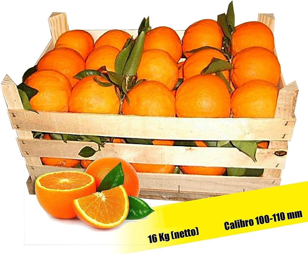Arance di sicilia tarocco brasiliano prima categoria calibro 100-110 peso netto 16 kg siciliane B01N4QG8GX