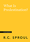 What Is Predestination? (Crucial Questions)