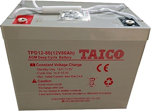 Batería estanca AGM Ciclo Profundo 80Ah 12V Energía solar: Amazon.es: Jardín