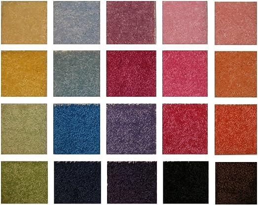 Best living room rug: Koeckritz 9 x12 Peachy Peach 25.5 oz 1/2″ Thick Plush Cut Pile Indoor Carpet Area Rug