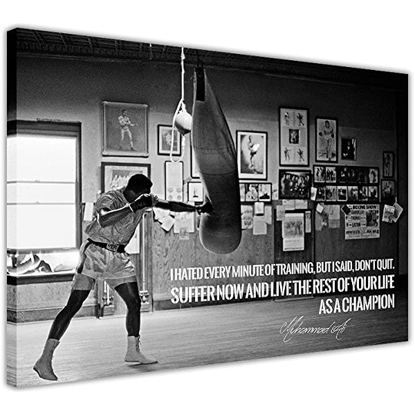 Famous American Boxer Boxing champion Mike Tyson Wall Poster Decor 30x24 inch
