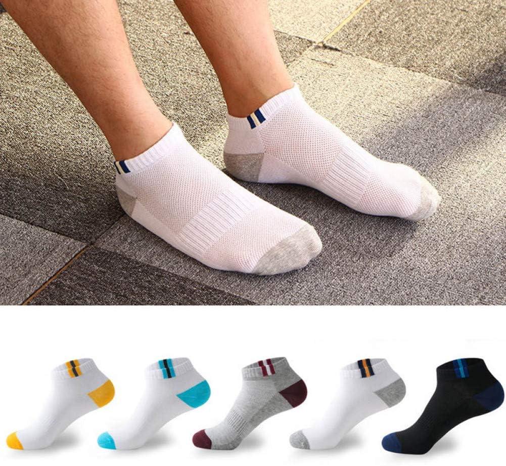 CXKWZ MenS Socks 5 Pairs//Lot Men Cotton Socks Summer Mesh Breathable Sock Classic Short Socks Thin