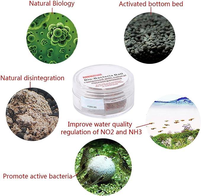 Dabixx 3 piezas Nitrobacteria Bio Bola Bacterial Agua Limpia Para ...