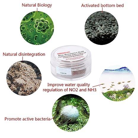 yifeict 3pcs agua limpia de bola bactérienne nitrobacteria Bio para el acuario de acuario