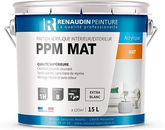 Renaudin Peinture 121625 Ppm Peinture Acrylique Finition Mat